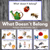 Which One Doesn`t Belong? Speech Therapy and Special Ed Set 2