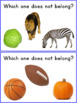 Which One Doesn`t Belong? Autism & Special Needs Worksheets Set 1