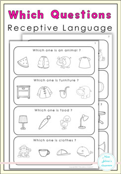 Which Questions - Receptive Language - Special Education