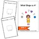 Which Shape Is It?  (An Adapted Book for Shape Identification)