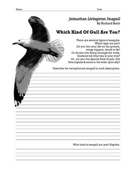 Which Type of Gull are You?