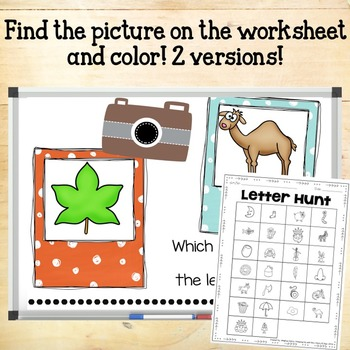Which Word Beginning Sound Hunt & Find PowerPoint