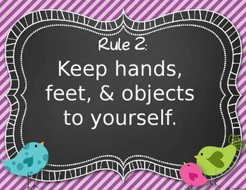 Whimsical Birds Class Rules (Editable)