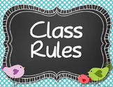 Whimsical Birds Class Rules (Editable)