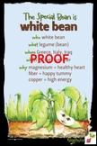 White Bean Poster - Available in English and Spanish!