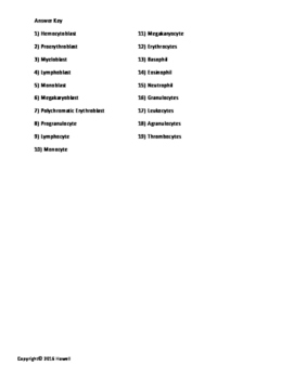 White Blood Cells Identification Worksheet or Quiz