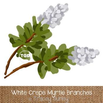 White Crepe Myrtle Art, Crape Myrtle Clip Art Printable Tr