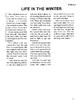 White Fang RL1-2 Adapted and Abridged Novel