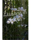 White Irises with Fence Background