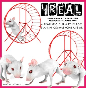 White Mouse / Lab Mouse Realistic Clip Art Mini Pack