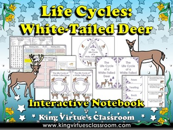 White-Tailed Deer Interactive Notebook - Life Cycles