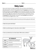 White Tailed Deer Lesson Pack