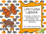White-Tailed Deer and Butterfly Life Cycle Lapbook