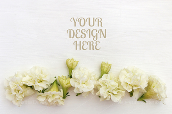 White background with flowers, flatlay, copy space