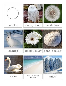White in Nature-Montessori 3 Part Cards