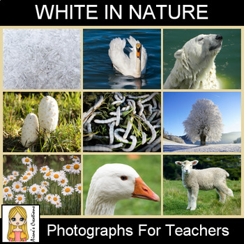 White in Nature Photograph Pack