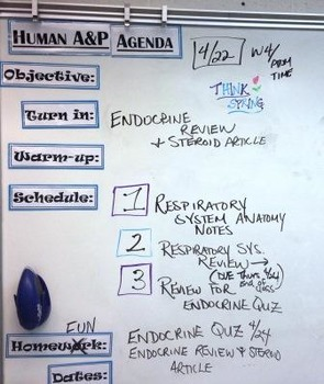 Whiteboard Magnet Agenda Headers - Create an organized classroom!