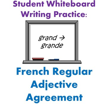 Whiteboard Practice - French Regular Adjectives