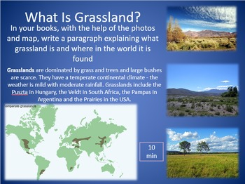 Who Eats Who - Grasslands And Foodwebs