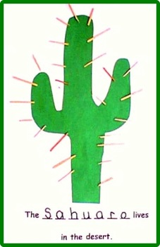 Desert Animals & Plants