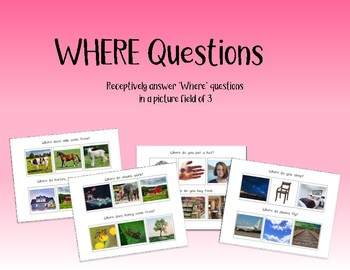 Where Questions Speech Therapy (real pictures in a field of 3)
