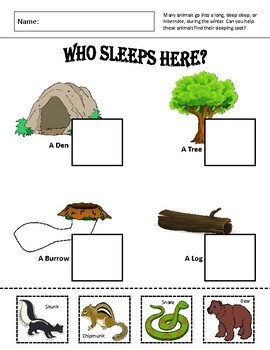 Who Sleeps Here?: Simple Hibernation Worksheet