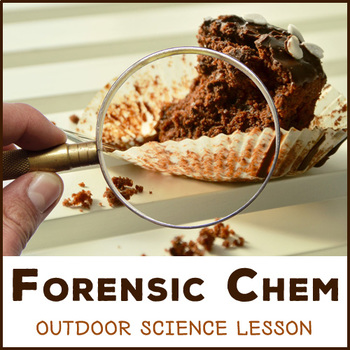 Who Stole the Cake? - outdoor lesson in Forensic Science and Chemistry