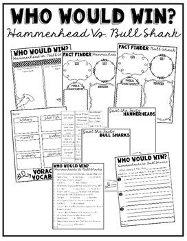 Who Would Win:  Hammerheads Vs. Bull Sharks