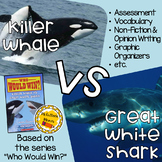 Who Would Win: Killer Whale VS Great White Shark Edition