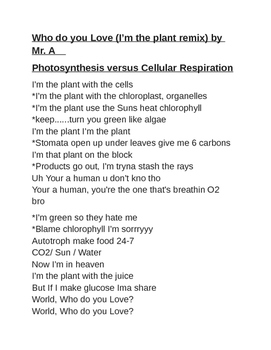 Who do you Love-I'm the plant remix by Mr. A w.LyricContentBreakdown.Verse1and2