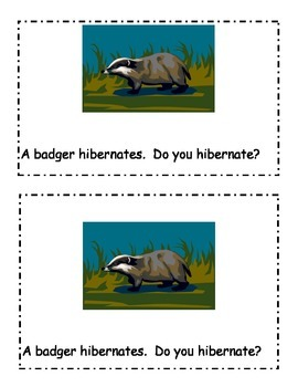 Who hibernates emergent reader!