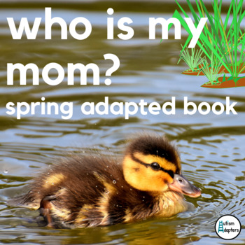 Who is My Mom? Spring Comprehension Adapted Book Leveled Bundle