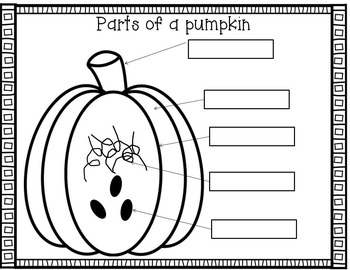 Who took the Pumpkin? Math, Literacy, and Science Fun