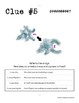 Whodunnit? - Protists - Knowledge Building Activity