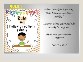 Whole Bain Learning Rules and Procedures