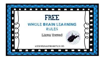 Whole Brain Learning Rules-Llama Themed