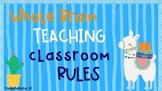 Whole Brain Rules- Cactus and Llama Theme