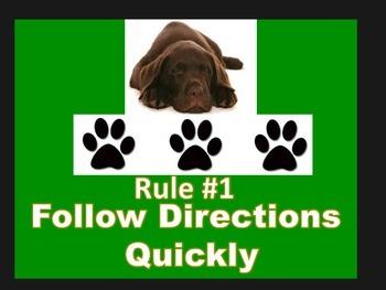 Whole Brain Rules - dog theme