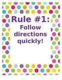 Whole Brain Teaching 5 Rules- multi polka