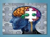 Whole Brain Teaching PPT