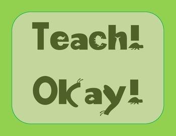 Whole Brain Teaching Posters - Bug Theme
