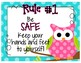 Whole  Brain Teaching Rules Posters (adapted for PBIS)