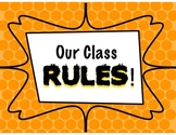 Whole Brain Teaching Rules and Posters *UPDATED*
