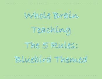 Whole Brain Teaching Rules for Bird Theme