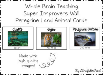 Super Improvers Wall Peregrine Animals EDITABLE