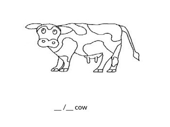 Whole-y Cow Companion Book