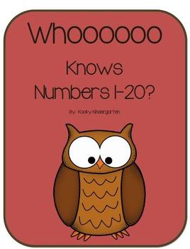 Whooo Knows Numbers 1-20?