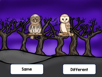 Whooo's the Same?  A Same/Different Tonal Game