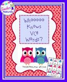 Valentines Day Silent E Game: Owl Theme