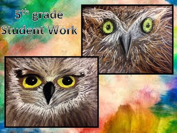 """Whoooooo's"" looking at You! Owl Eyes : Exploring Charcoal and Chalk Pastel"